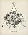 Vintage illustrations by Benjamin Fawcett for Shirley Hibberd digitally enhanced by rawpixel 32.jpg