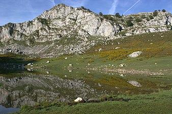 Vistas lagos de covadonga 04.jpg