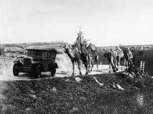 Volvo, reklambild. Bil och kameler - SMVK - C04849.tif