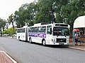 Volvo B10M Articulated PMC Adelaide.jpg