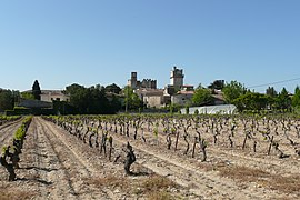 View of Saint-Laurent-des-Arbres and vineyards