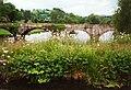Vyrnwy road bridge - geograph.org.uk - 710587.jpg