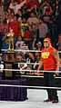 WWE 2014-04-07 21-27-59 NEX-6 1633 DxO (13929692042).jpg