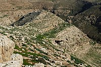 Wadi-Makukh-515.jpg