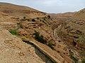Wadi Qelt IMG 1734.jpg