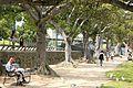 Walking along Southbank (6760062367).jpg