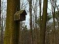 Wanderung Kin-Top in Hardter Wald Moenchengladbach 11 Maerz 2017 (V-0892-2017).jpg