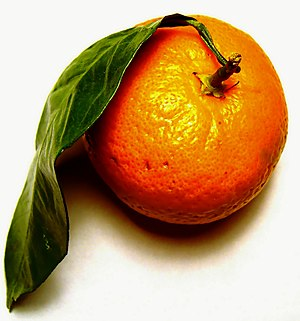 Tangerine - Image: Want a tangerine?