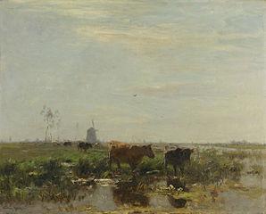 Prairie avec des vaches au bord de l'eau