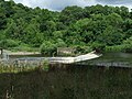 Weir on the River Clyde - geograph.org.uk - 895849.jpg