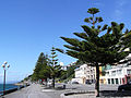 Wellington Oriental Bay Esplanade.JPG