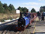 Wells Harbour Railway, Pinewoods station - geograph.org.uk - 153937.jpg