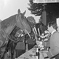 Wereld Dierendag 1964 , voederen van de dieren, Bestanddeelnr 916-9729.jpg