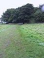 West Yorkshire Sculpture Park (3807421288).jpg