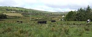 English: Western County Limerick A pastoral vi...