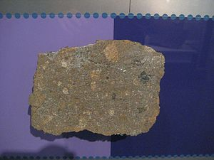 H chondrite - Weston meteorite, H4