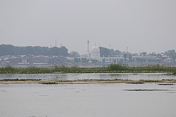 Wetland with temple in the background, India, 2016.jpg
