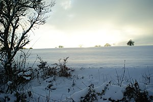 English: Winter Landscape at Chaldon, Surrey Y...