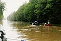 Wolf-River-GermantownTN.jpg