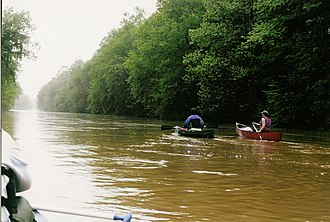 Wolf River (Tennessee) - The Wolf River at Germantown, Tennessee after two days of heavy thunderstorms