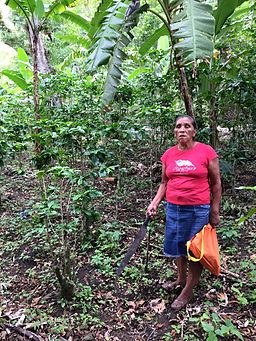 Woman coffee farmer in Nicaragua