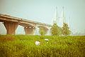 Wuhan second bridge.jpg