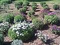 Wunderschöner Garten - panoramio.jpg