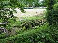 Wuppertal Hardt 2014 077.JPG