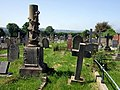 Y fynwent Aberteifi-Cardigan cemetery - geograph.org.uk - 825912.jpg