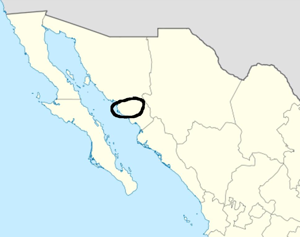 Yaqui location