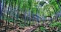 Yixing, Wuxi, Jiangsu, China - panoramio (1).jpg