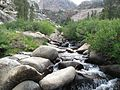 Yosemite National Park Stream.jpg