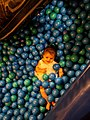 Young child playing with plastic balls.jpg