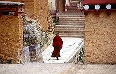 Tùng Tán Lâm Tự tại Trung Điện