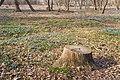 Znamensky Park - 002.jpg