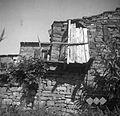 """""""Koudot"""" (stranišče) v Kolombanju 1949.jpg"""