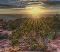 """Sunfire"" - Photo by John Fowler.jpg"
