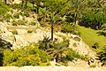 ® S.D. PEÑISCOLA CASTILLO JARDINES FELIPE II - panoramio (5).jpg