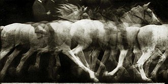 Multiple exposure - An 1886 chronophotographic study of horse motion, by Etienne-Jules Marey