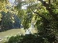 Κοιλάδα Τεμπών - Αγία Παρασκευή - Άλσος με θέα τον ποταμό Πηνειό.jpg