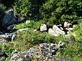 Бузький Гард, Національний природний парк.jpg