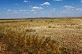 Вид с высоты 236,6 в северном направлении. На горизонте - Змеиная гора - panoramio.jpg