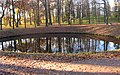 Гатчинский парк. Нижний Ботанический сад, круглый пруд.jpg