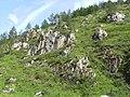 Горы Тамира.JPG