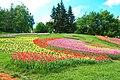 Ежегодная выставка тюльпанов.jpg