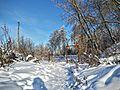 Кашин, Горсад - panoramio (1).jpg