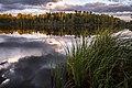 Нижне-Исинский пруд (Иван-Озеро) - panoramio.jpg