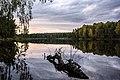 Нижне-Исинский пруд (Иван-Озеро) - panoramio (6).jpg