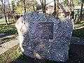 Пам'ятний камінь поблизу сосни.JPG