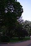Парк имени Горького в Москве. Фото 21.jpg